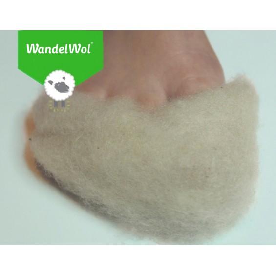 WandelWol | wol voor in uw schoenen